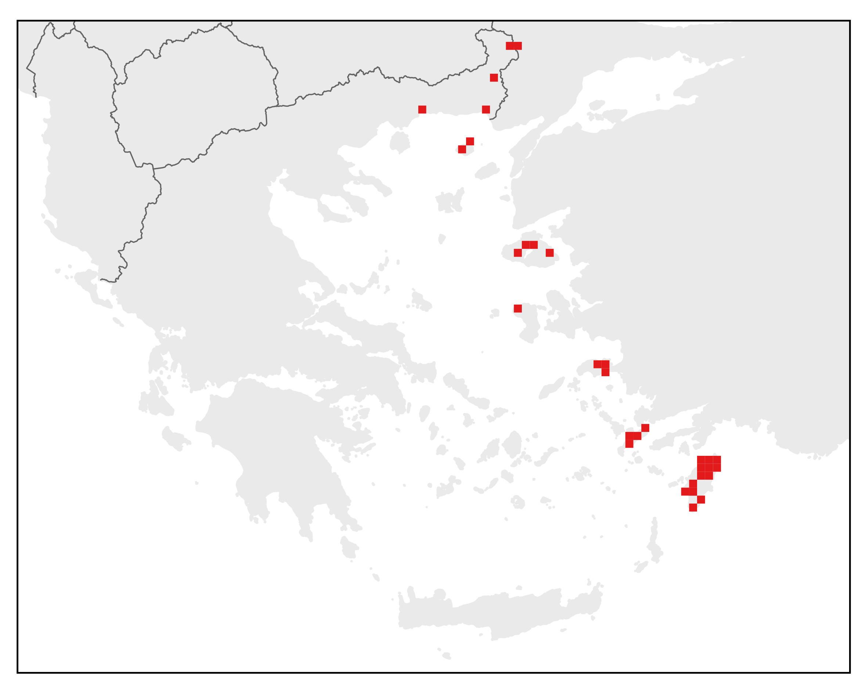 Ανατολικός Δενδροβάτραχος