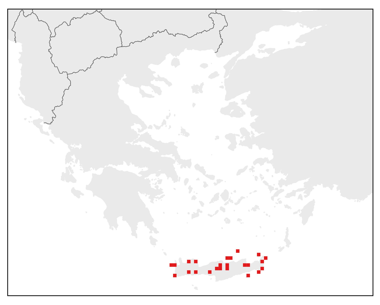 Σαμιαμίδι της Κρήτης