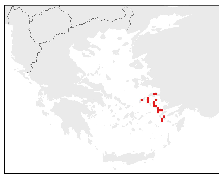Ανατολικό Σαμιαμίδι