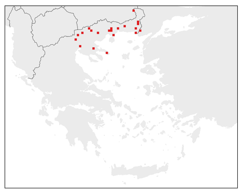Βαλκανικός τρίτωνας